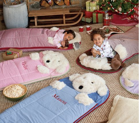 the best places to find kids sleeping bags for toddlers padoozles. Black Bedroom Furniture Sets. Home Design Ideas